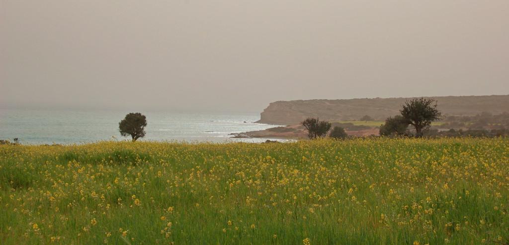 Кипрская зима