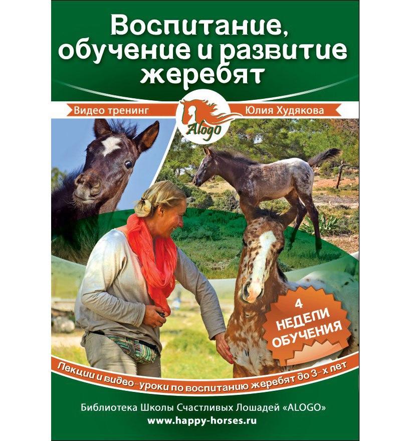 Тренинг «Воспитание, обучение и развитие жеребят»