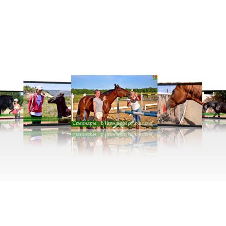 Серия фильмов о семинарах «В Гармонии с лошадью»