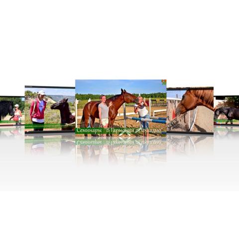 Фильм 2 Серия фильмов о семинарах «В Гармонии с лошадью»