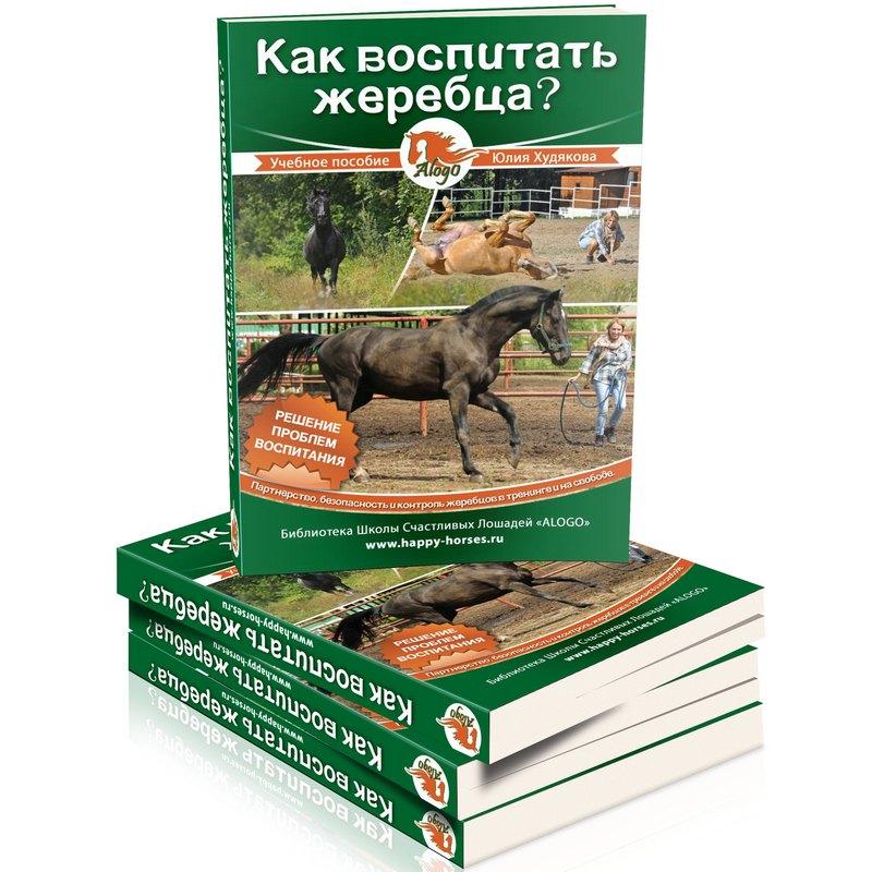 book Markttechnische Handelssysteme