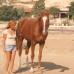 Самый быстрый способ настроить лошадь на рабочий лад.
